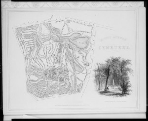 This early map of Mount Auburn shows the topography, curved roads, and water features common in the Picturesque style. Image courtesy of the Library of Congress